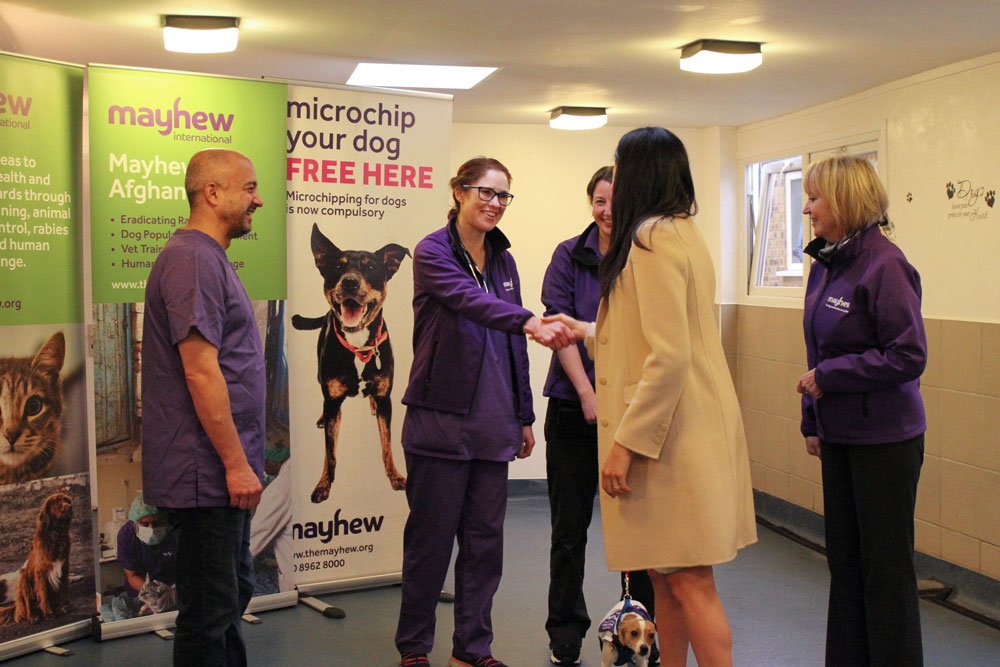 Duchess of Sussex visits Mayhew Patron