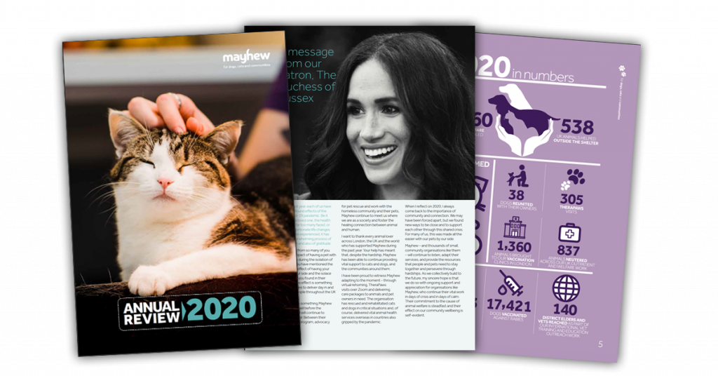 Mayhew Annual Review 2020 preview featuring Patron Meghan Markle